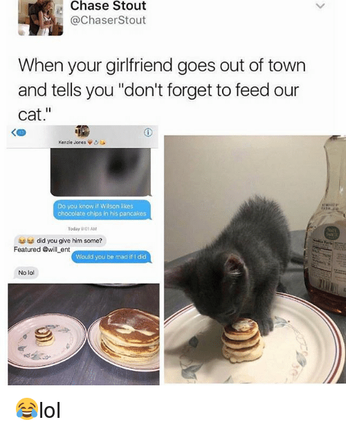 """Cats, Lol, and Memes: Chase Stout  @ChaserStout  When your girlfriend goes out of town  and tells you """"don't forget to feed our  cat.""""  く四  Kenzie Jones Vo  Do you know if Wilson likes  chocolate chips in his pancakes  Today 901AM  did you give him some?  Featured @will ent owlbe madíit l dic  Would you be mad if I did  No lol 😂lol"""