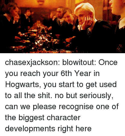 Shit, Target, and Tumblr: chasexjackson:  blowitout:  Once you reach your 6th Year in Hogwarts, you start to get used to all the shit.  no but seriously, can we please recognise one of the biggest character developments right here