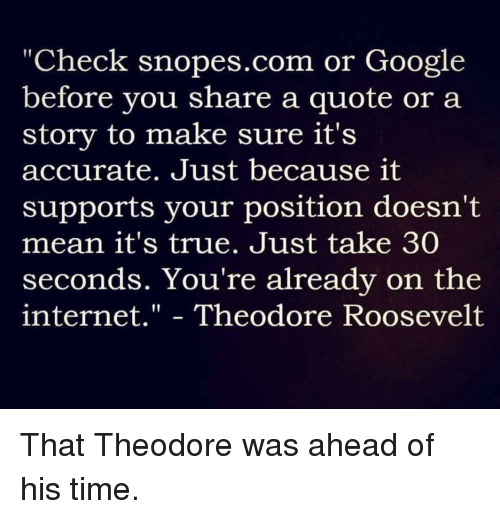 """Google, Internet, and Politics: """"Check snopes.com or Google  before you share a quote or a  story to make sure it's  accurate. Just because it  supports your position doesn't  mean it's true. Just take 30  seconds. You're already on the  internet."""" - Theodore Roosevelt"""