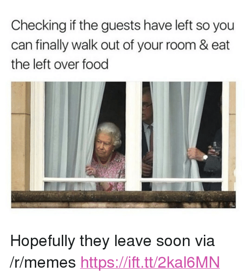 "Food, Memes, and Soon...: Checking if the guests have left so you  can finally walk out of your room & eat  the left over food <p>Hopefully they leave soon via /r/memes <a href=""https://ift.tt/2kal6MN"">https://ift.tt/2kal6MN</a></p>"