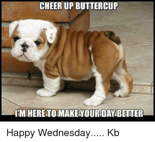 Memes, Wednesday, and 🤖: CHEERUP BUTTERCUP  NIMIHERETOIMAKENYOURDAY BETTER Happy Wednesday..... Kb