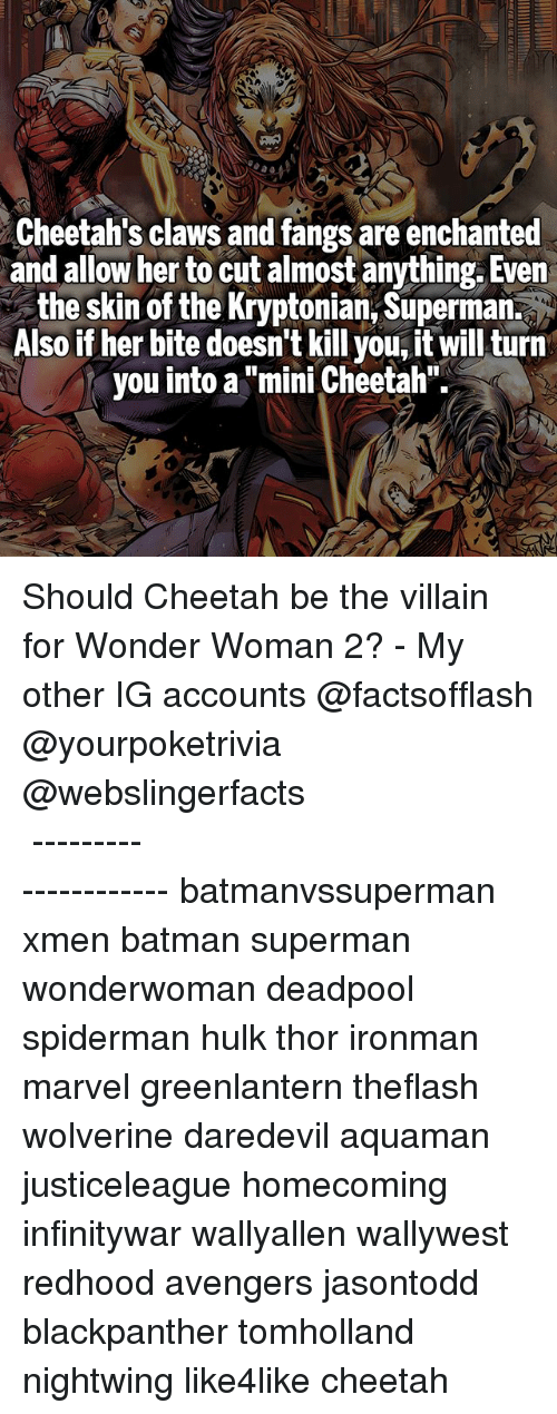 """Batman, Memes, and Superman: Cheetah's claws and fangs are enchanted  and allow her to cut almost anything. Even  the skin of the Kryptonian, Superman.  Also if her bite doesn't kill you, it will turn  you into a """"mini Cheetah"""" Should Cheetah be the villain for Wonder Woman 2? - My other IG accounts @factsofflash @yourpoketrivia @webslingerfacts ⠀⠀⠀⠀⠀⠀⠀⠀⠀⠀⠀⠀⠀⠀⠀⠀⠀⠀⠀⠀⠀⠀⠀⠀⠀⠀⠀⠀⠀⠀⠀⠀⠀⠀⠀⠀ ⠀⠀--------------------- batmanvssuperman xmen batman superman wonderwoman deadpool spiderman hulk thor ironman marvel greenlantern theflash wolverine daredevil aquaman justiceleague homecoming infinitywar wallyallen wallywest redhood avengers jasontodd blackpanther tomholland nightwing like4like cheetah"""