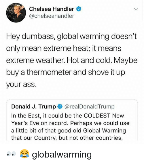 Ass, Chelsea, and Global Warming: Chelsea Handler  @chelseahandler  Hey dumbass, global warming doesn't  only mean extreme heat; it means  extreme weather. Hot and cold. Maybe  buy a thermometer and shove it up  your ass.  Donald J. Trump @realDonaldTrump  In the East, it could be the COLDEST New  Year's Eve on record. Perhaps we could use  a little bit of that good old Global Warming  that our Country, but not other countries, 👀 😂 globalwarming