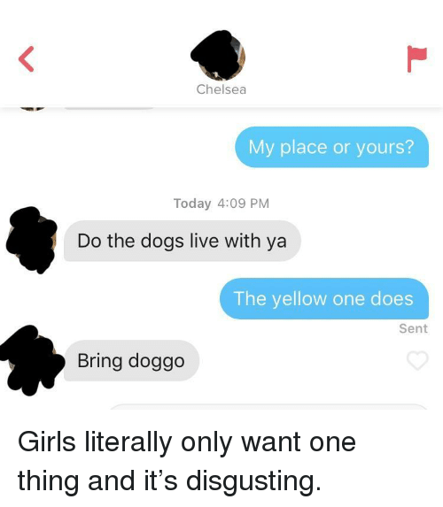 Chelsea, Dogs, and Girls: Chelsea  My place or yours?  Today 4:09 PM  Do the dogs live with ya  The yellow one does  Sent  Bring doggo Girls literally only want one thing and it's disgusting.
