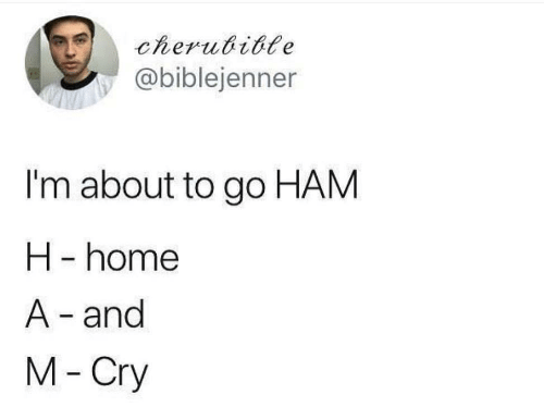 Home, Ham, and Cry: cherubible  @biblejenner  I'm about to go HAM  H -home  A- and  M-Cry
