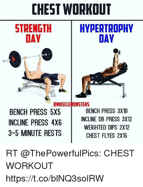 CHEST WORKOUT STRENGTH DAY HYPERTROPHY DAY CMUSCLE MONSTERS