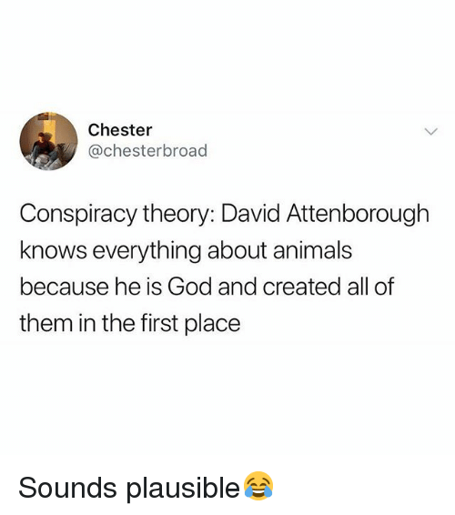 Animals, God, and British: Chester  @chesterbroad  Conspiracy theory: David Attenborough  knows everything about animals  because he is God and created all of  them in the first place Sounds plausible😂