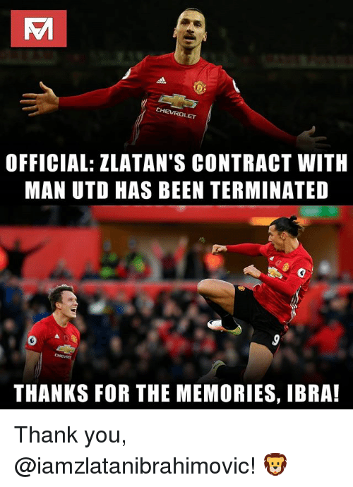 Memes, Thank You, and Chevrolet: CHEVROLET  OFFICIAL: ZLATAN'S CONTRACT WITH  MAN UTD HAS BEEN TERMINATED  THANKS FOR THE MEMORIES, IBRA! Thank you, @iamzlatanibrahimovic! 🦁