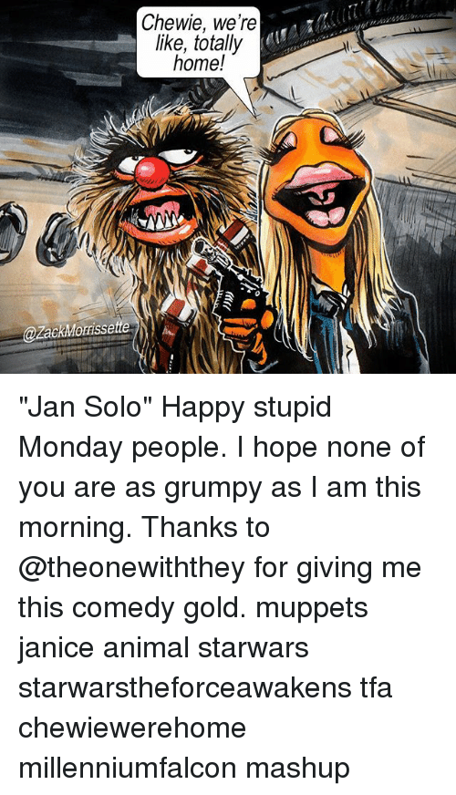 Chewie We're Like Totally Home! Jan Solo Happy Stupid Monday