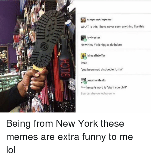 Funny, Lmao, and Lol: cheyennecheyenne  WHAT is this, i have never seen anything like this  tryllvester  How New York niggas do bdsm  kingjaffejoffer  lmao  you been mad disobedient, ma  joeymanifesto  AAA the safe word is 'aight son chi  Source: cheyennecheyenne Being from New York these memes are extra funny to me lol