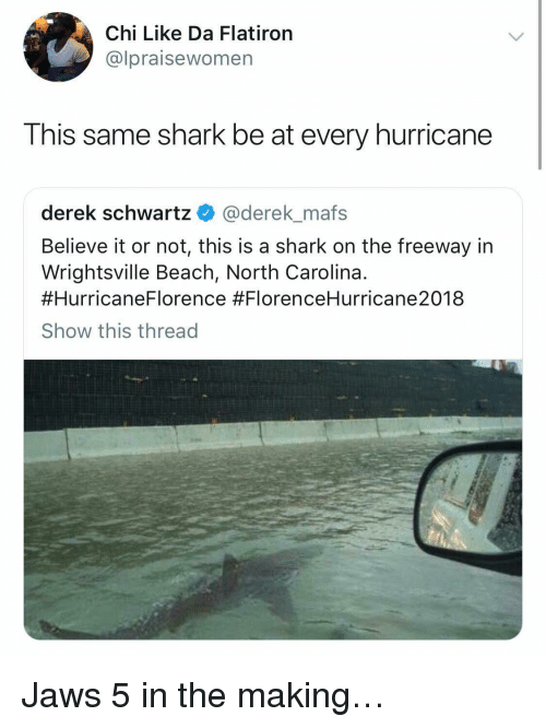 Shark, Beach, and Hurricane: Chi Like Da Flatiron  @lpraisewomen  This same shark be at every hurricane  derek schwartz@derek mafs  Believe it or not, this is a shark on the freeway in  Wrightsville Beach, North Carolina.  #Hurricane 8  Show this thread  Florence Jaws 5 in the making…
