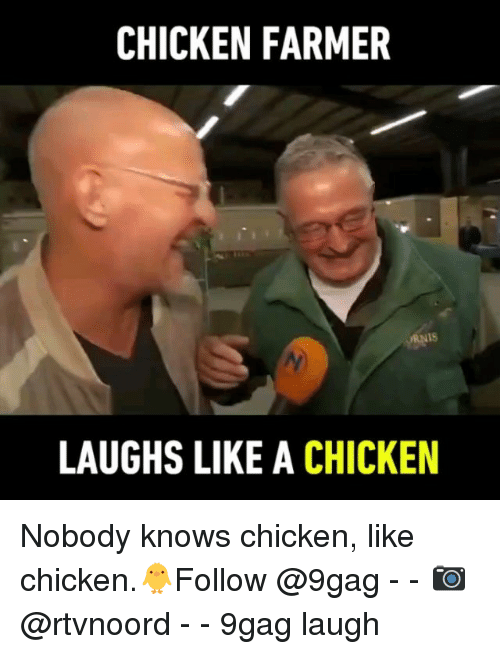 9gag, Memes, and Chicken: CHICKEN FARMER  1S  LAUGHS LIKE A CHICKEN Nobody knows chicken, like chicken.🐥Follow @9gag - - 📷@rtvnoord - - 9gag laugh