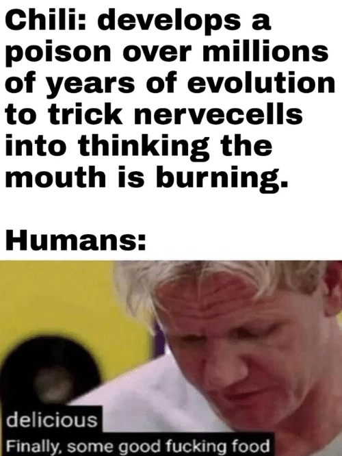 Food, Evolution, and Good: Chili: develops a  poison over millions  of years of evolution  to trick nervecells  into thinking the  mouth is burning.  Humans:  delicious  Finally, some good fucking food