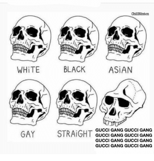 Asian, Gucci, and Gang: ChillBlinton  WHiTE  BLACK  ASiAN  GUCCI GANG GUCCI GANG  GUCCI GANG GUCCI GANG  GUCCI GANG GUCCI GANG  GUCCI GANG GUCCI GANG  GAY