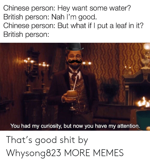 Dank, Memes, and Target: Chinese person: Hey want some water?  British person: Nah I'm good.  Chinese person: But what if l put a leaf in it?  British person:  You had my curiosity, but now you have my attention. That's good shit by Whysong823 MORE MEMES