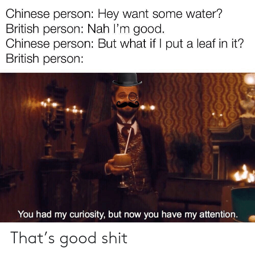 Shit, Chinese, and Good: Chinese person: Hey Want some water?  British person: Nah l'm good.  Chinese person: But what if I put a leaf in it?  British person:  You had my curiosity, but now you have my attention. That's good shit