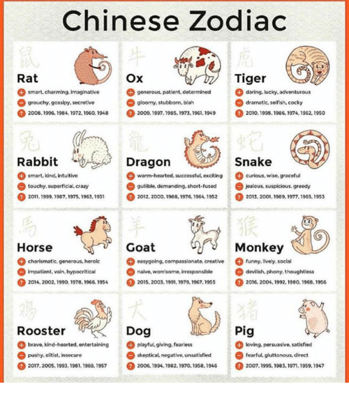 Crazy Funny And Jealous Chinese Zodiac Tiger Rat Ox Daring Iucky Adventurous