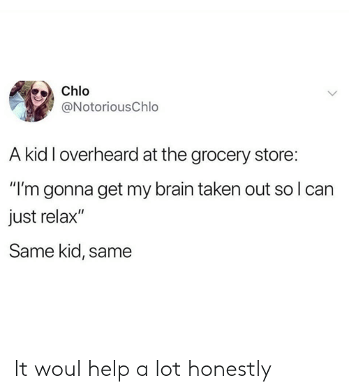 """Dank, Taken, and Brain: Chlo  @NotoriousChlo  A kid I overheard at the grocery store:  """"I'm gonna get my brain taken out so I can  just relax""""  Same kid, same It woul help a lot honestly"""