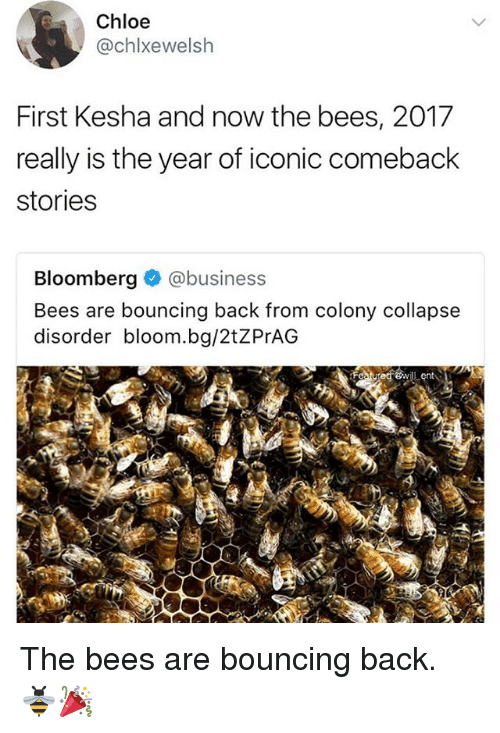 Memes, Business, and Kesha: Chloe  @chlxewelsh  First Kesha and now the bees, 2017  really is the year of iconic comeback  stories  Bloomberg @business  Bees are bouncing back from colony collapse  disorder bloom.bg/2tZPrAG The bees are bouncing back. 🐝🎉