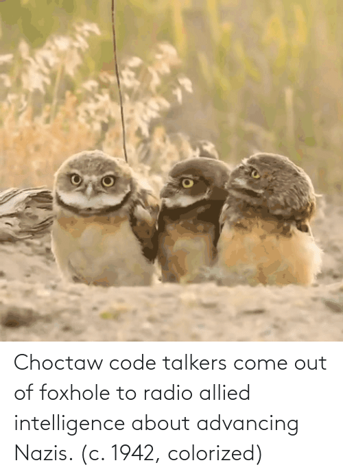 Radio, Code, and Intelligence: Choctaw code talkers come out of foxhole to radio allied intelligence about advancing Nazis. (c. 1942, colorized)