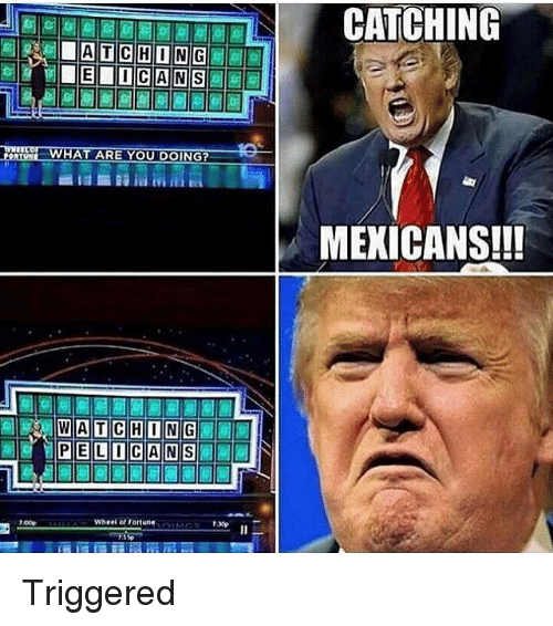 chong what are you doing watching m pelican wheel of 6932052 ✅ 25 best memes about mexican mexican memes