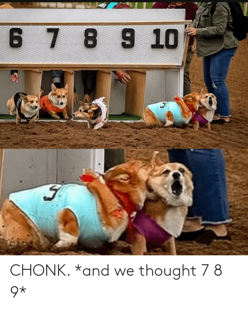 Thought, And, and Chonk: CHONK. *and we thought 7 8 9*