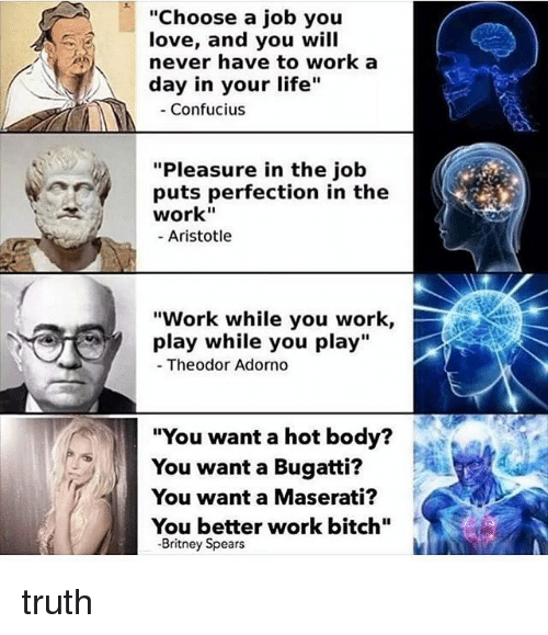 """Bitch, Britney Spears, and Life: """"Choose a job you  love, and you will  never have to work a  day in your life""""  - Confucius  """"Pleasure in the job  puts perfection in the  work""""  - Aristotle  """"Work while you work,  play while you play""""  Theodor Adorno  """"You want a hot body?  You want a Bugatti?  You want a Maserati?  You better work bitch""""  -Britney Spears truth"""