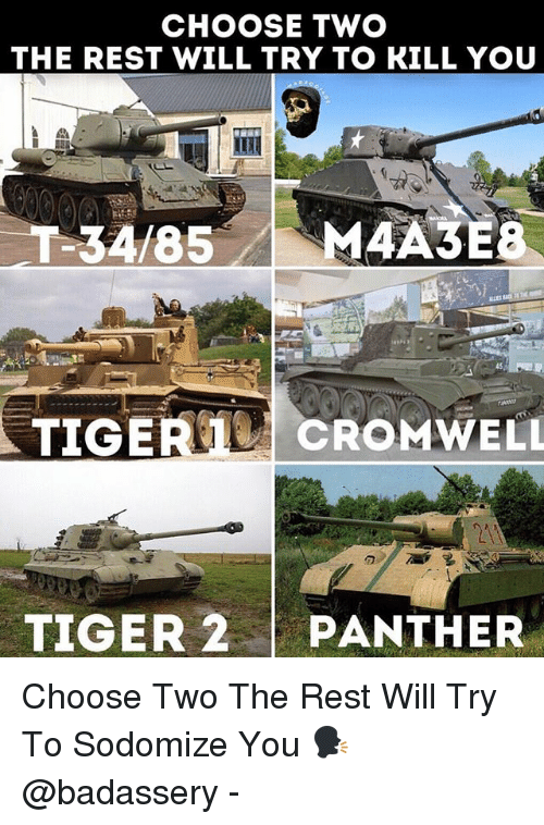 Memes, Tiger, and 🤖: CHOOSE TWO  THE REST WILL TRY TO KILL YOU  45  2A  TIGER 2PANTHER Choose Two The Rest Will Try To Sodomize You 🗣 @badassery -