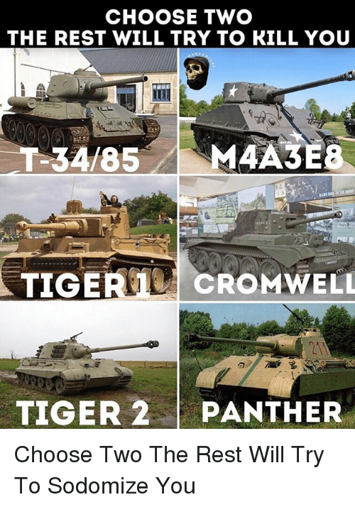 Memes, Tiger, and 🤖: CHOOSE TWO  THE REST WILL TRY TO KILL YOU  45  2A  TIGER 2PANTHER Choose Two The Rest Will Try To Sodomize You