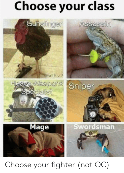 Class, Assassin, and Sniper: Choose your class  Gunelinger  Assassin  seth.v.2  Heary Weapons Sniper  Specialist  Swordsman  Mage Choose your fighter (not OC)
