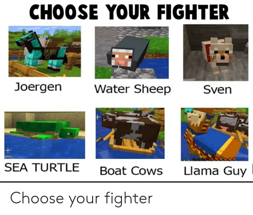 Turtle, Water, and Boat: CHOOSE YOUR FIGHTER  Joergen  Water Sheep  Sven  SEA TURTLE  Llama Guy  Boat Cows Choose your fighter