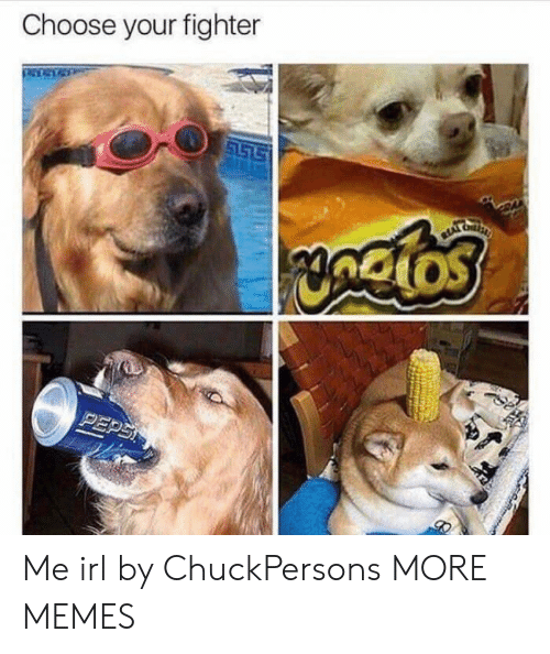 Dank, Memes, and Target: Choose your fighter Me irl by ChuckPersons MORE MEMES