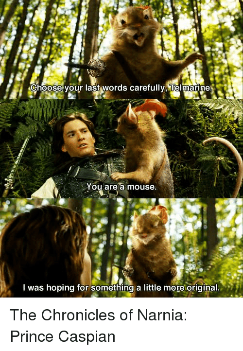 choose your last words carefully telmarines you are a mouse 11571074 ✅ 25 best memes about the chronicles of narnia the chronicles,Narnia Memes