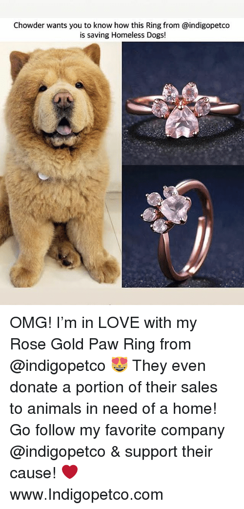 Animals, Dogs, and Homeless: Chowder wants you to know how this Ring from @indigopetco  is saving Homeless Dogs! OMG! I'm in LOVE with my Rose Gold Paw Ring from @indigopetco 😻 They even donate a portion of their sales to animals in need of a home! Go follow my favorite company @indigopetco & support their cause! ❤️ www.Indigopetco.com