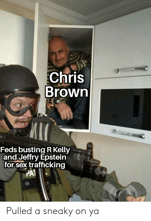 Chris Brown, R. Kelly, and Reddit: Chris  Brown  Feds busting R Kelly  and Jeffry Epstein  for sex trafficking  PA1 Pulled a sneaky on ya