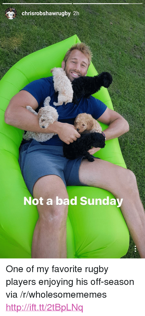 """Bad, Http, and Sunday: chrisrobshawrugby 2h  o,  Not a bad Sunday <p>One of my favorite rugby players enjoying his off-season via /r/wholesomememes <a href=""""http://ift.tt/2tBpLNq"""">http://ift.tt/2tBpLNq</a></p>"""