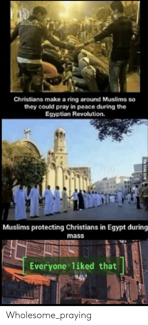 9gag, Revolution, and Egypt: Christians make a ring around Muslims so  they could pray in peace during the  Egyptian Revolution.  Muslims protecting Christians in Egypt during  mass  Everyone liked that  9GAG.COM Wholesome_praying