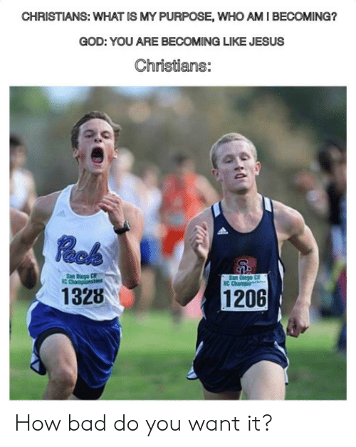 Bad, God, and Jesus: CHRISTIANS: WHAT IS MY PURPOSE, WHO AM I BECOMING?  GOD: YOU ARE BECOMING LIKE JESUS  Christians:  Rock  San Diego CIF  C Chaponshi  San Diego C  XC Champio  1328  1206 How bad do you want it?