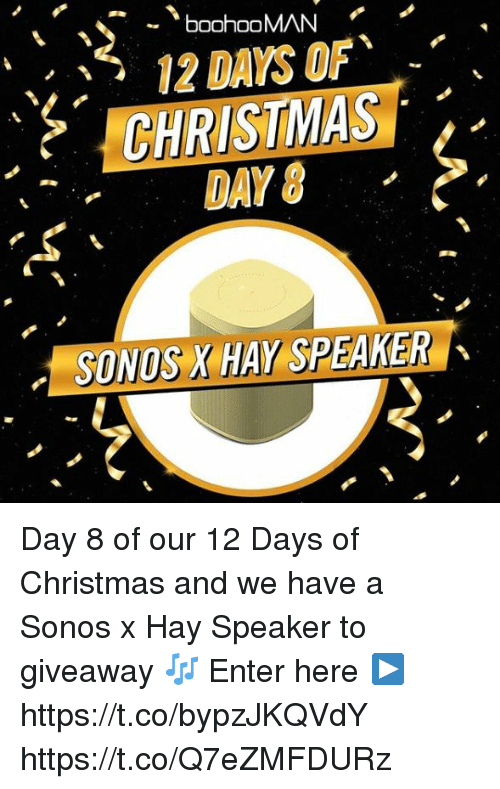 ffcf2717095 CHRISTMAS DAY 8 SONOS X HAY SPEAKER Day 8 of Our 12 Days of ...