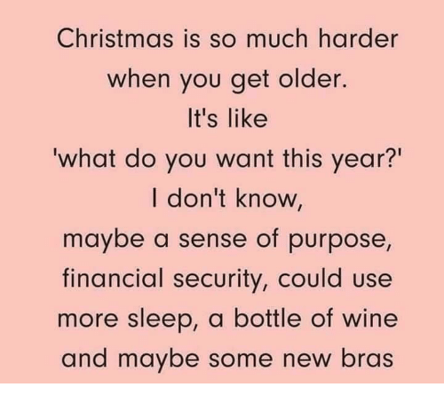 """Christmas, Memes, and Wine: Christmas is so much harder  when you get older.  It's like  what do you want this year?""""  I don't know,  maybe a sense of purpose,  financial security, could use  more sleep, a bottle of wine  and maybe some new bras"""