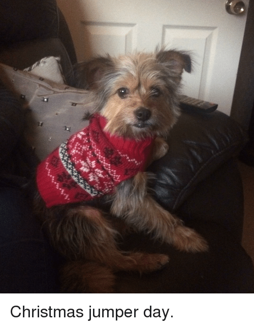 christmas jumper day - photo #17