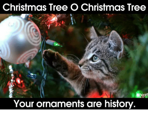 Christmas Tree O Christmas Tree Your Ornaments Are History ...