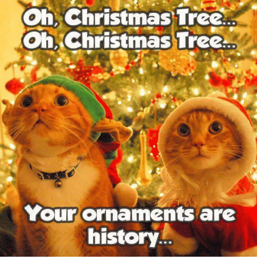 ✅ 25+ Best Memes About Christmas Tree | Christmas Tree Memes