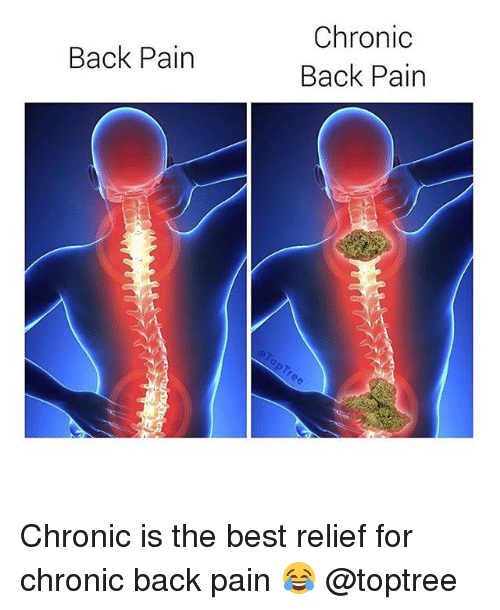 Low Back Pain Fact Sheet | National Institute of ...