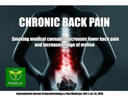 chronic back pain smoking medical cannabis decreases lower back pain 13804544 ✅ 25 best memes about anesthesiology anesthesiology memes,Memes About Chronic Pain