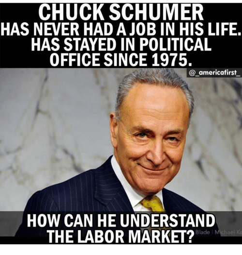 Blade, Life, and Memes: CHUCK SCHUMER  HAS NEVER HAD A JOB IN HIS LIFE  HAS STAYED IN POLITICAL  OFFICE SINCE 1975.  @_americafirst  HOW CAN HE UNDERSTAND  THE LAB0R MARKET?  Blade l