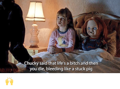 chucky-said-that-lifes-a-bitch-and-then-