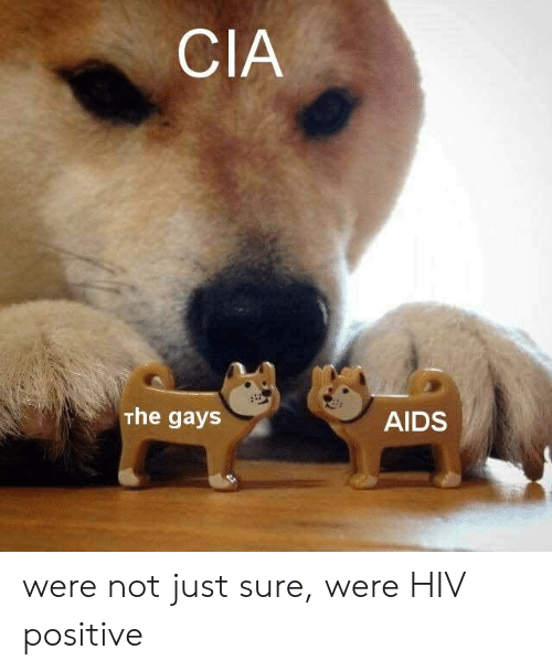 Hiv, Cia, and Aids: CIA  The gays  AIDS were not just sure, were HIV positive