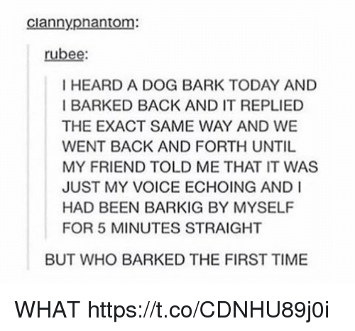 Time, Today, and Voice: ciannypnantom:  rubee  I HEARD A DOG BARK TODAY AND  BARKED BACK AND IT REPLIED  THE EXACT SAME WAY AND WE  WENT BACK AND FORTH UNTIL  MY FRIEND TOLD ME THAT IT WAS  JUST MY VOICE ECHOING AND I  HAD BEEN BARKIG BY MYSELF  FOR 5 MINUTES STRAIGHT  BUT WHO BARKED THE FIRST TIME WHAT https://t.co/CDNHU89j0i