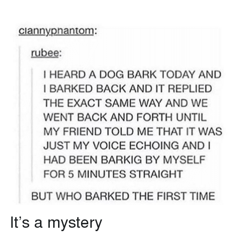 Tumblr, Time, and Today: ciannypnantom:  rubee:  I HEARD A DOG BARK TODAY AND  I BARKED BACK AND IT REPLIED  THE EXACT SAME WAY AND WE  WENT BACK AND FORTH UNTIL  MY FRIEND TOLD ME THAT IT WAS  JUST MY VOICE ECHOING AND I  HAD BEEN BARKIG BY MYSELF  FOR 5 MINUTES STRAIGHT  BUT WHO BARKED THE FIRST TIME